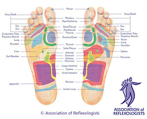 Therapies. AoRfootmap